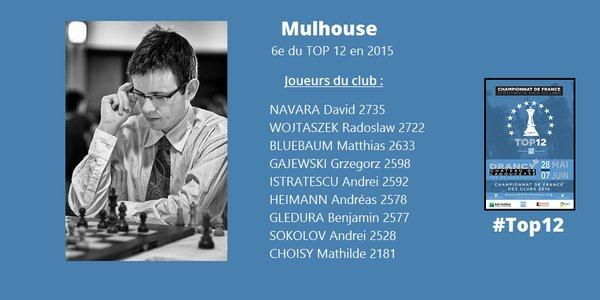 L'équipe de Mulhouse qui pourra compter sur son duo de choc à plus de 2700 points Elo, David Navara et Radek Wojtaszek - Illustration © FFE