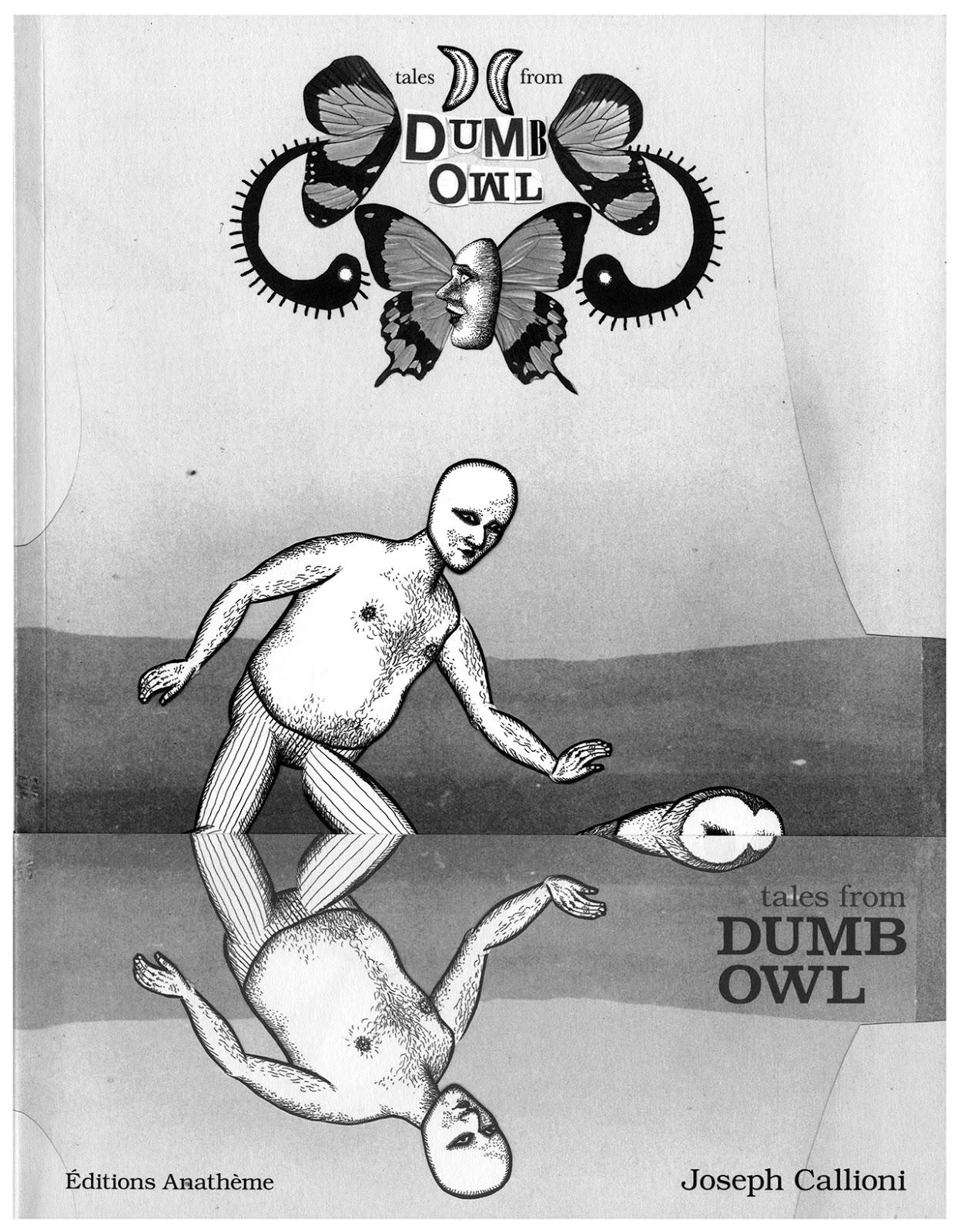 Dumb Owl - Joseph Callioni