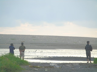 Asian Waterbird Census di Delta Sungai Progo, Yogyakarta