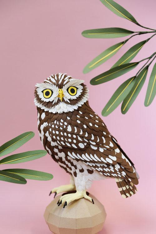 Kingfisher Calendar Design : My owl barn amazing paper bird sculptures by diana