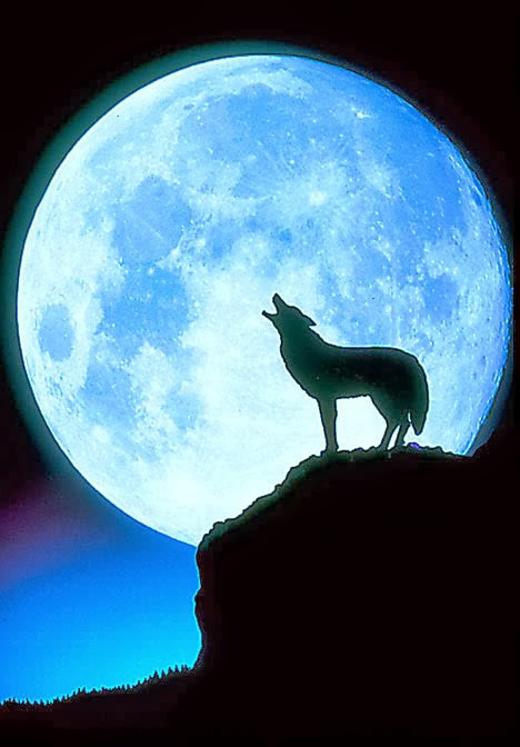 The Wolf Moon and Home Protection Spell