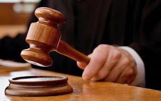 Alfred Pettersen Plexus President sues Plexus and Tarl Robinson
