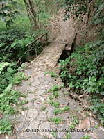 jalur paket trekking di sentul bogor