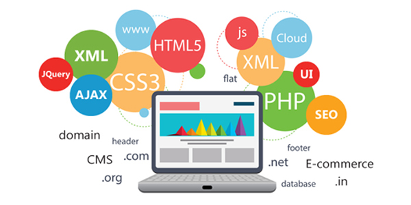 Web Designing In Kphb -LMNSOFTSOLUTIONS