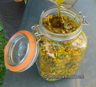 oleolito e chiacchere nel giardino della fattoria didattica dell ortica a Bologna Valsamoggia Savigno in Appennino vicino Zocca