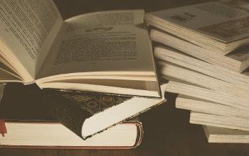 Literatura-2