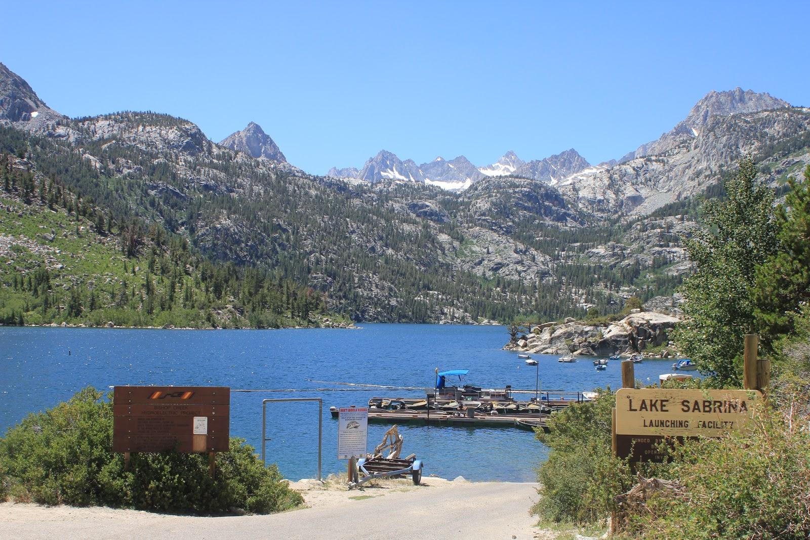 Camissonia S Corner Eastern Sierras South Lake Amp Lake