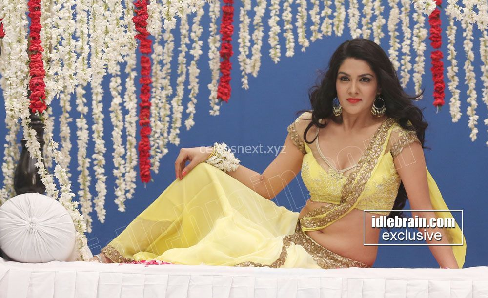 Sakshi Chodary in Choli Transparent Saree Spicy Pics