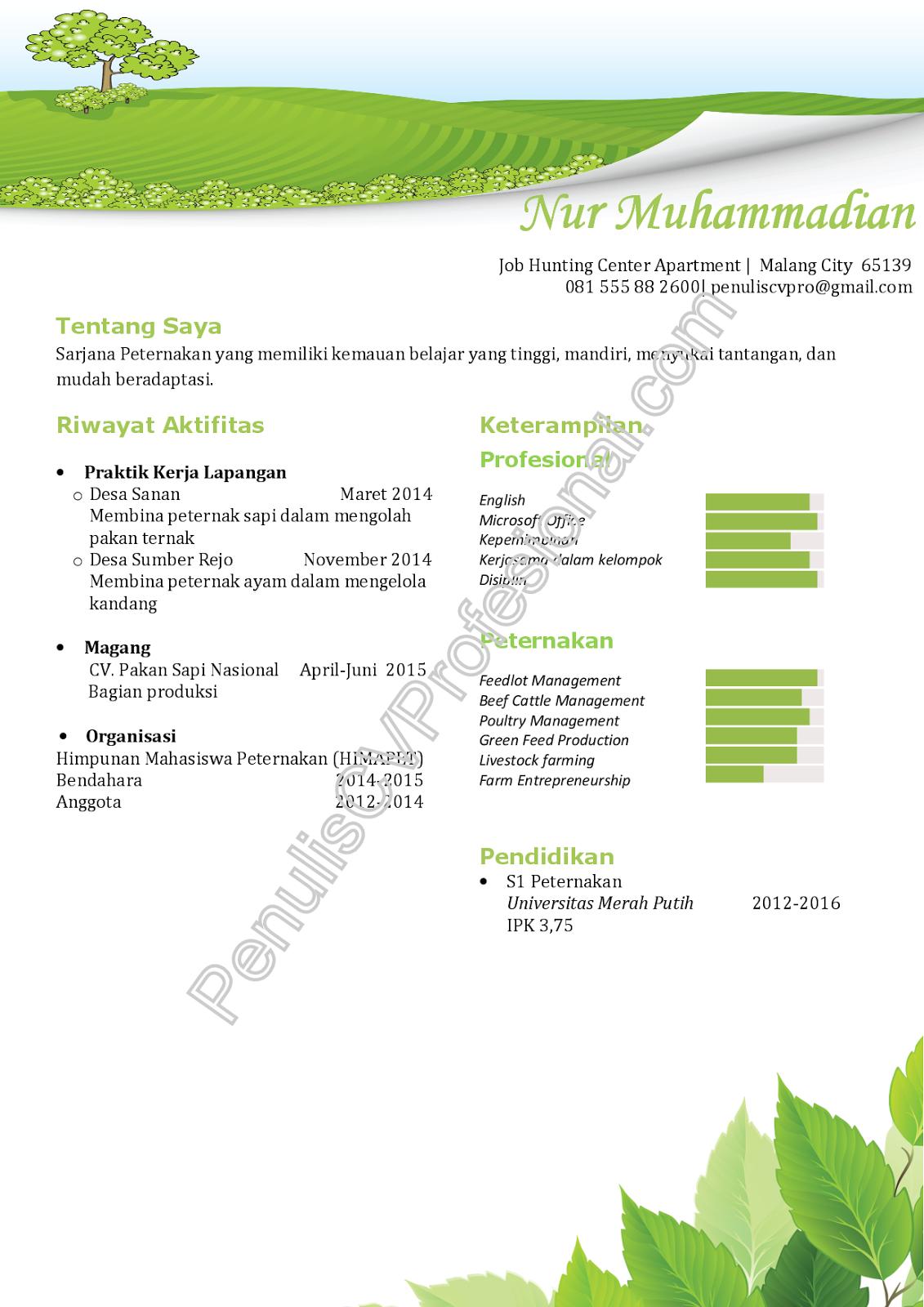 Job Hunting Center Contoh Curriculum Vitae Fresh Graduate Sarjana Peternakan