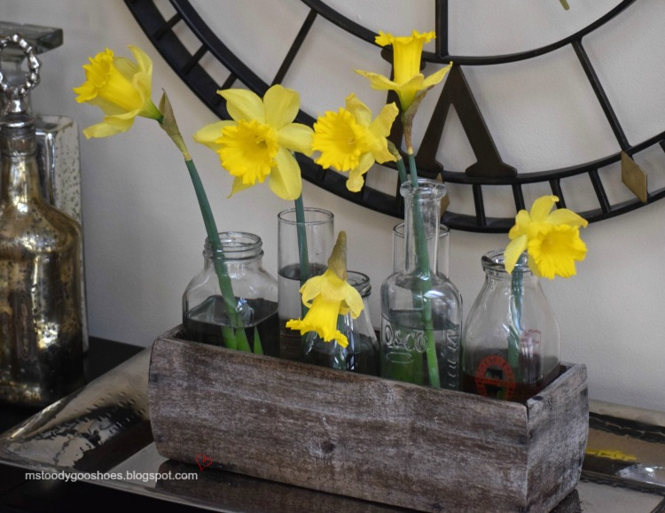 Single daffodils look so pretty in different size vases. | Ms. Toody Goo Shoes
