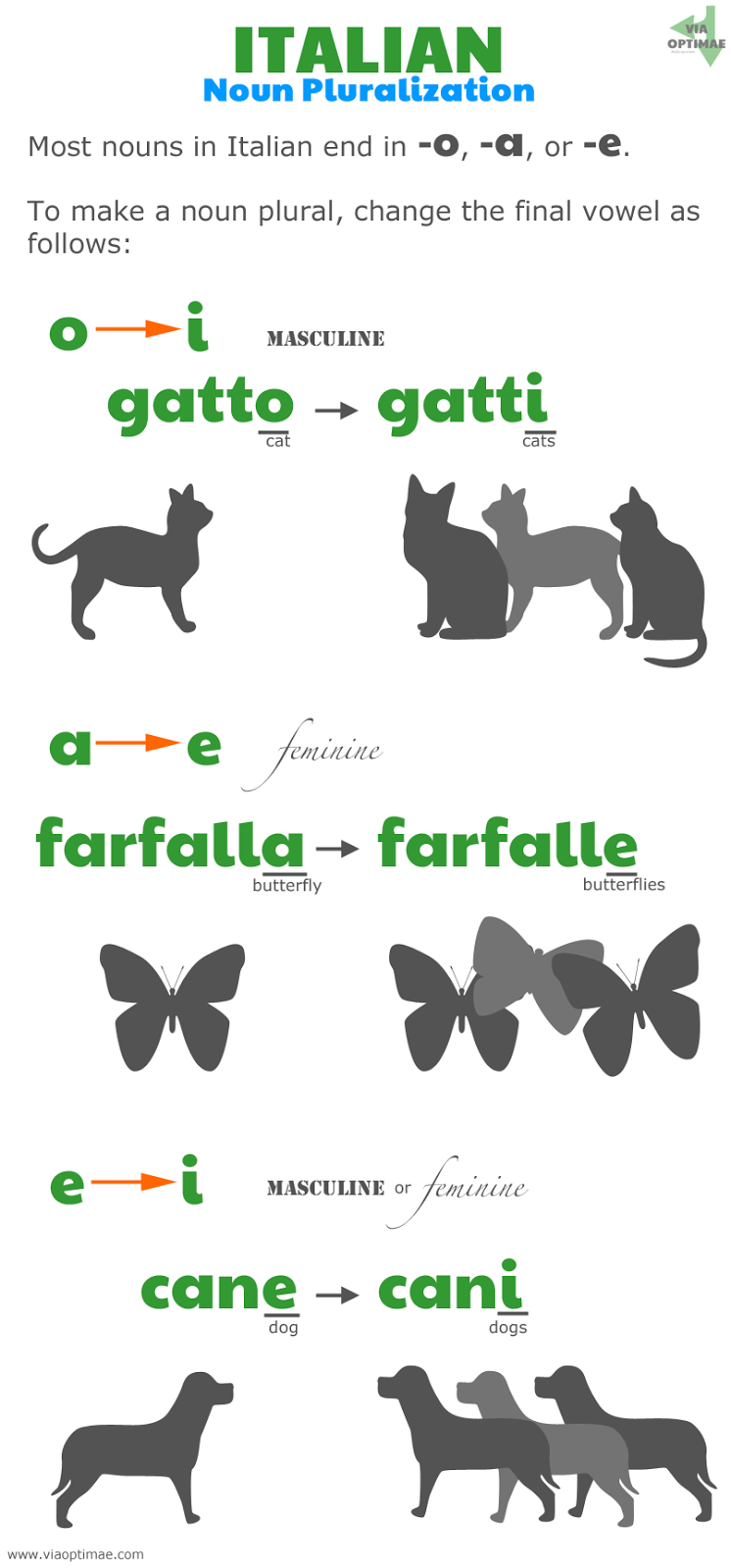 Italian pluralization patterns, Italian plurals: o to i, gatto to gatti; a to e, farfalla to farfalle, e to i, cane to cani; www.viaoptimae.com//2014/04/pluralization.html