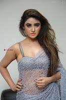 Sony Charishta in Saree Deep neck Choli ~  Exclusive 15.JPG