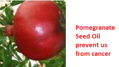 Health Benefits And Uses Of Pomegranate Seed Oil - Pomegranate Seed Oil prevent us from cancer