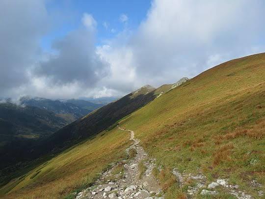 Szlak do Starorobociańskiej Doliny.