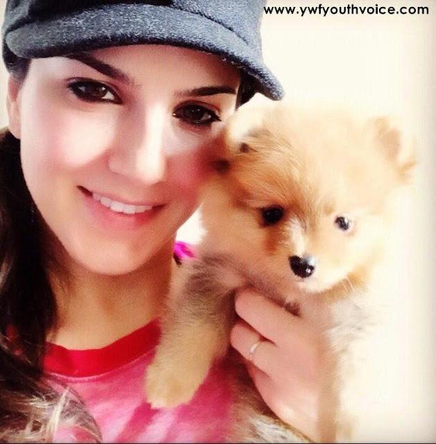 Sunny Leone With Pet, Adorable Sunny Leone, Cute Sunny Leone, Bautiful Sunny Leone, Desi Look Sunny Leone, Hot Sunny Leone, Sexy Sunny Leone Wallpaper