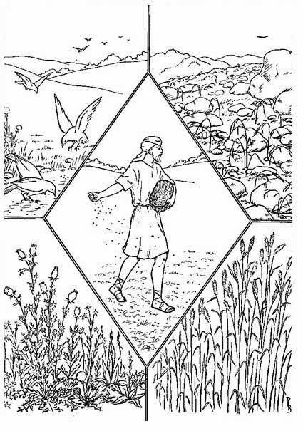 El Renuevo De Jehova: La Parabola del sembrador - Imagenes para ...