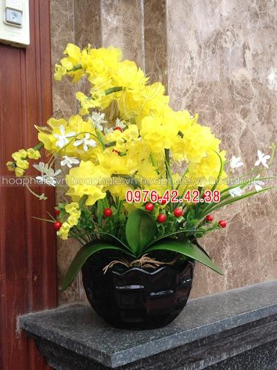 Hoa pha le tai Ba Dinh