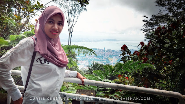 review curtis crest , the habitat penang hill , bukit bendera
