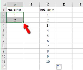 Tips dan Trik Excel Cara Entri Data nomor urut dengan Cepat