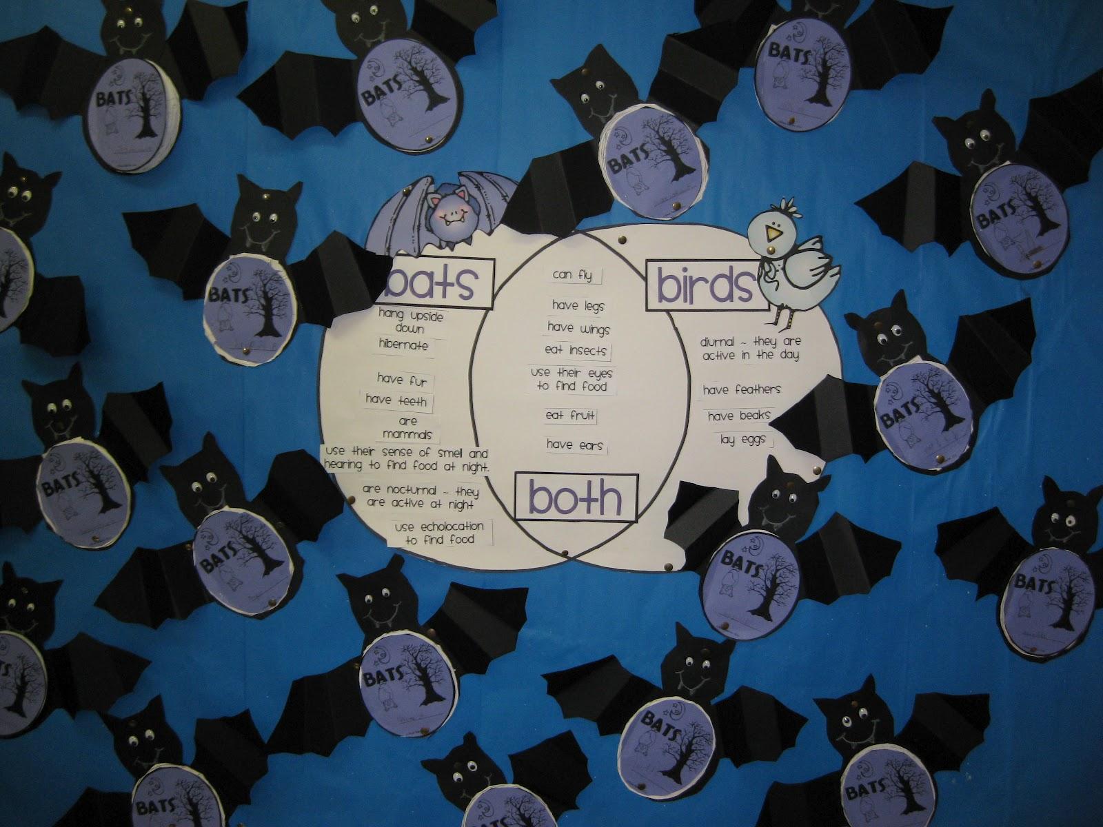 venn diagram bulletin board 3 phase 6 lead motor wiring classroom fun gone batty and a freebie