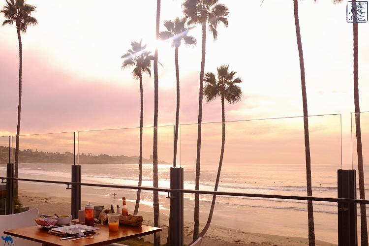 Le Chameau Bleu - Blog Voyage Californie USA - Plage de la Jolla en Californie du Sud USA