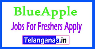 BlueApple Recruitment 2017 Jobs For Freshers Apply