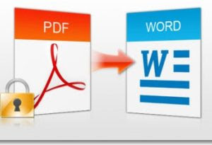 modificare pdf in word online