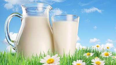 Cara Menggemukan Badan Dengan Susu