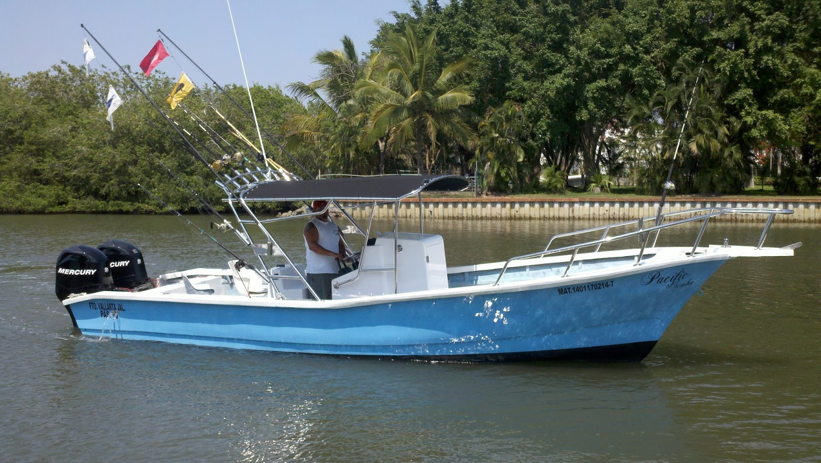 Pv sportfishing 29ft super panga for up to 4 people for Puerto vallarta fishing