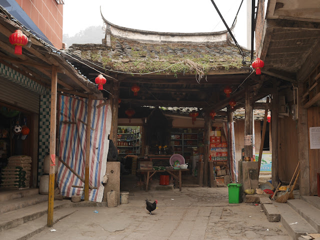 chicken on Zhongjie in Dajing, Xiapu