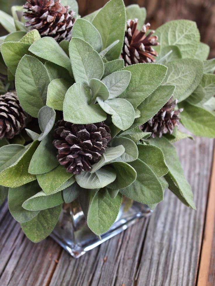 sage and pinecone centerpiece