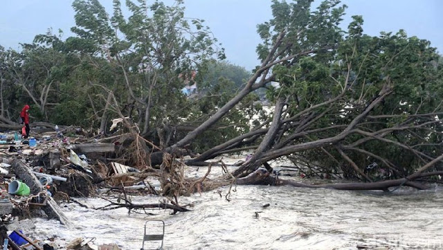 Muncul Lumpur Usai Gempa di Sigi, Bikin Bangunan dan Pohon Amblas