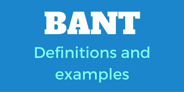 BANT - Definition, Examples And Whether It's Still Useful