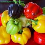 Capsicums, Bell Peppers