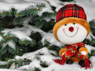 real-christmas-snowman-winter-dressing-image.jpg