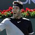 Del Potro le ganó a Raonic y jugará con Federer la final de Indian Wells