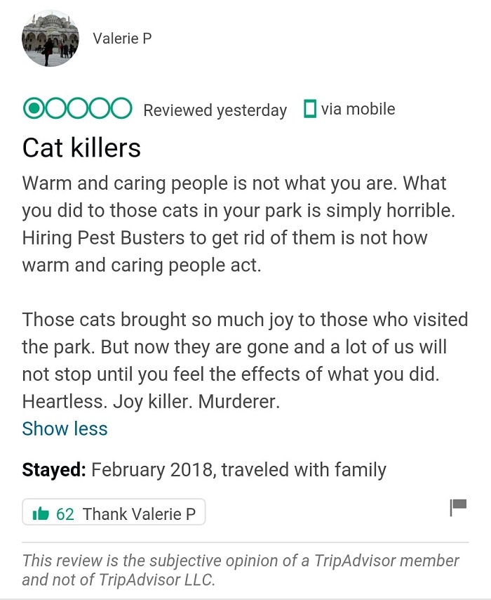 This 5-star hotel is under extreme backlash over the removal of cats