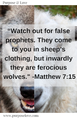 Watch out for false prophets. They come to you in sheep's clothing, but inwardly they are ferocious wolves. Matthew 7:15
