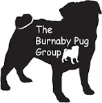 THE BURNABY PUG GROUP