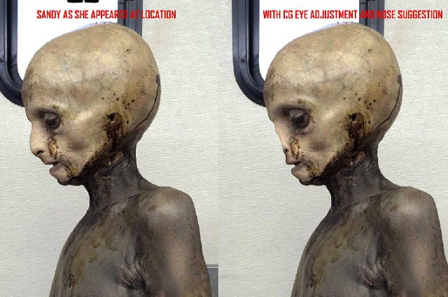 The side view of TV show The X Files Alien prop.