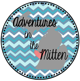 http://teachingadventuresinthemitten.blogspot.com/2016/07/non-fiction-fun-summer-stash-blog-hop.html