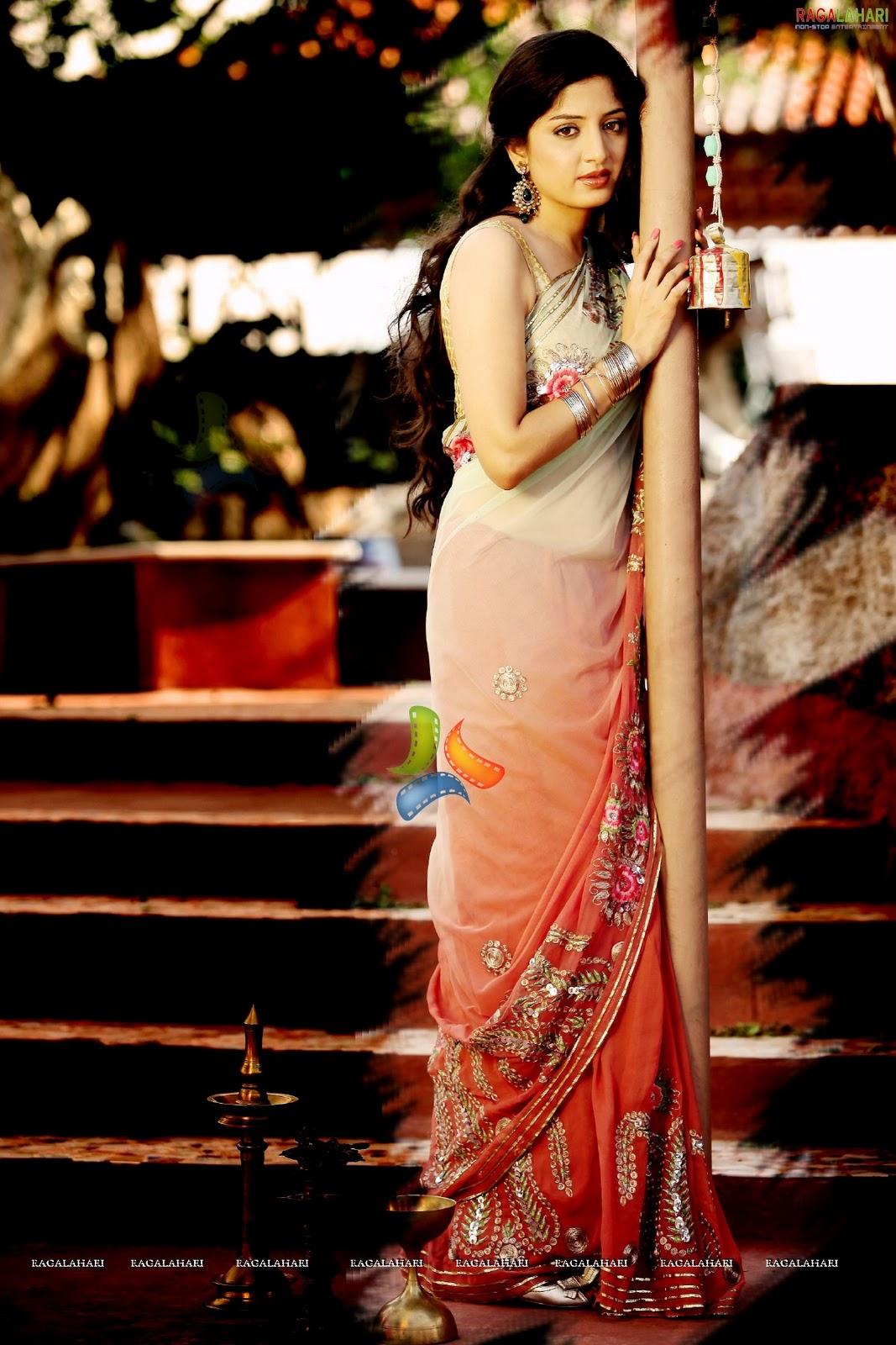Film Celebrity Photos Sexy South Indian Actress Poonam -8976