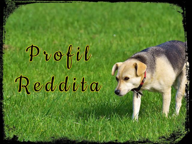 Relewantna - Profil Reddita