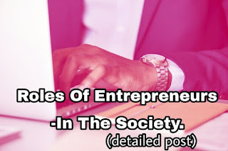 Role of entrepreneur