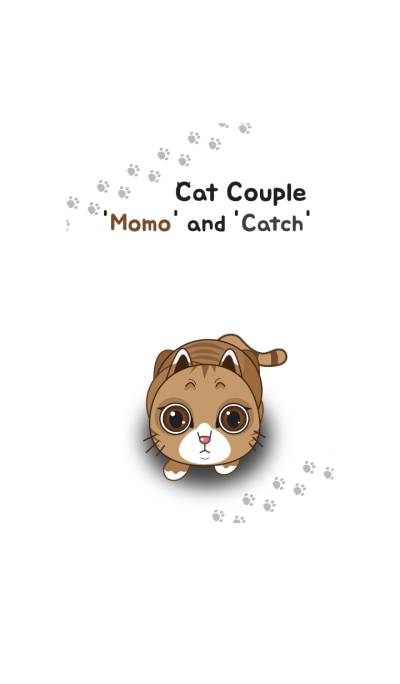 Cat Couple 'Momo' and 'Catch' theme