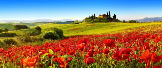 Propiedad, Italia y Derecho romano