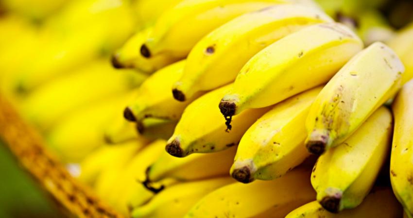 #Banana-prata