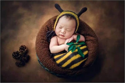 Baby born photography dengan konsep menjadi seorang bayi lebah