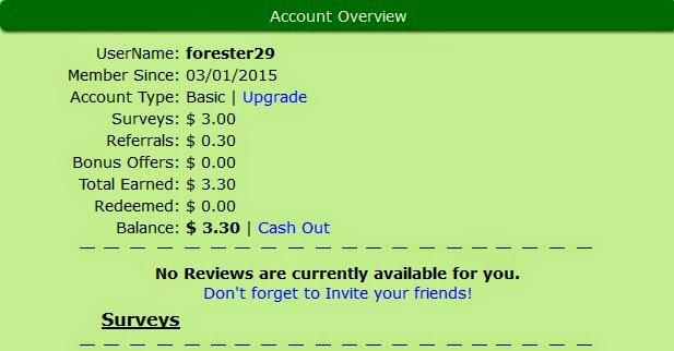 Tips Meraih Dollar dari Review Website di Internet