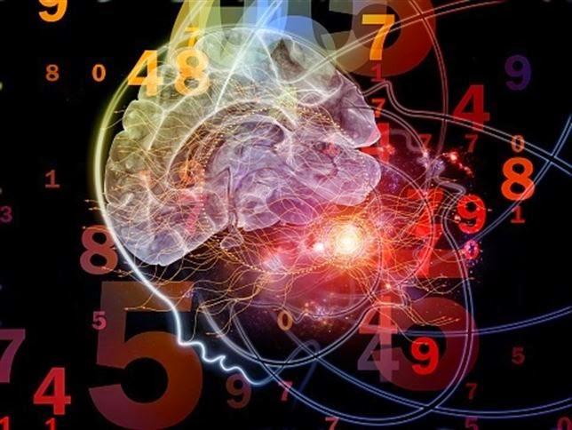 20141024114250 644 - Superdotados: Cómo descifrar una mente brillante